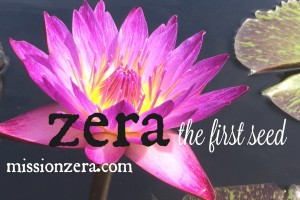 the first seed (zera)